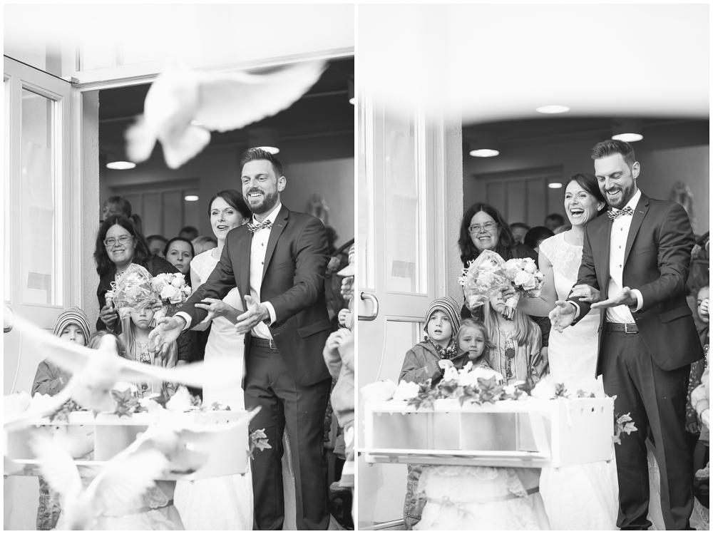 Tauben Hochzeit