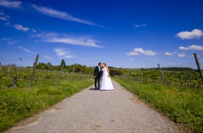 Hochzeitsfotograf Michaelsberg